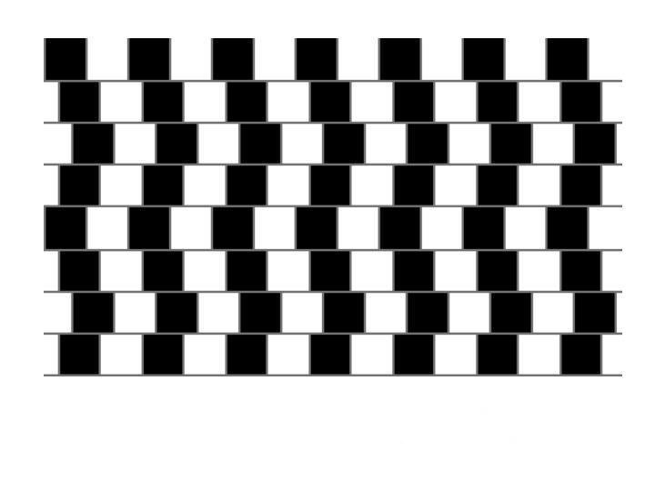 1234210674.jpg